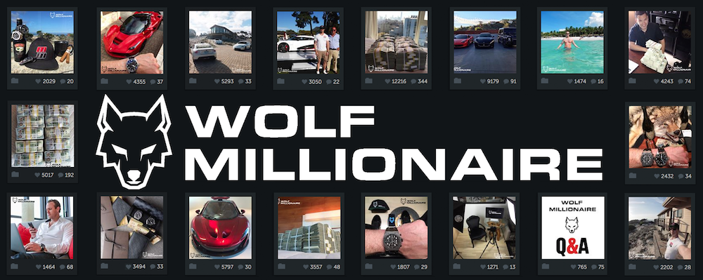 [Image: 0-100K-Followers-Wolf-Millionaire.png]