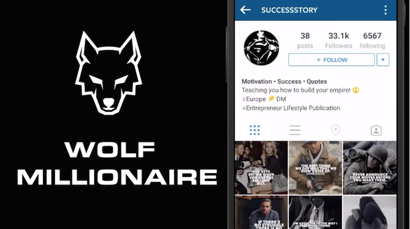 Wolf Millionaire Student Review
