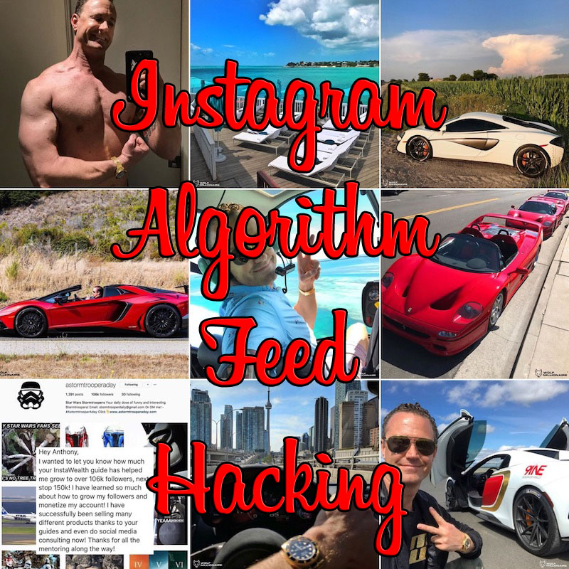 algorithm feed hacking