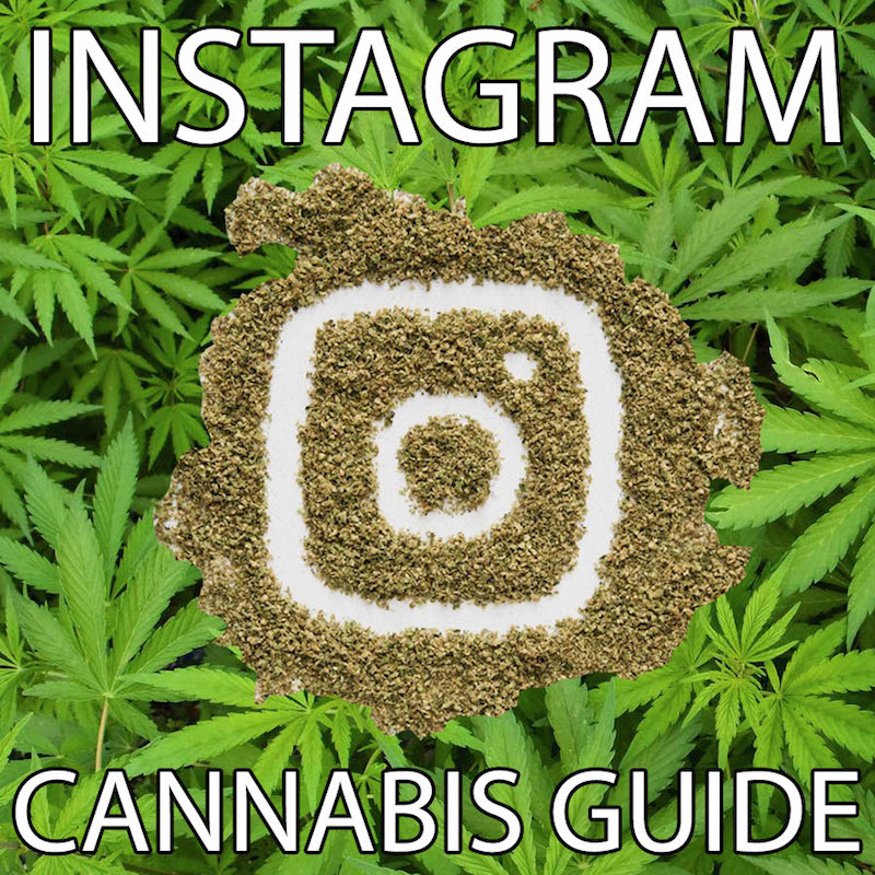 Cannabis-Instagram-Guide