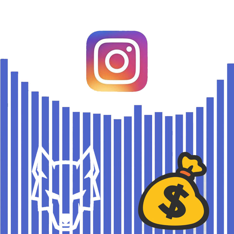 Insights Make Instagram Money