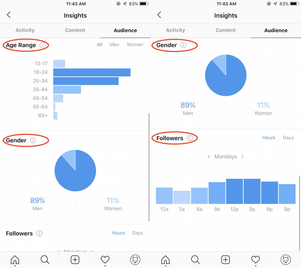 BOOST Your Income In 2019 Using Instagram Analytics - Wolf